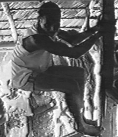 In the 1990's, native eyewitnesses were interviewed by American Carl Baugh and missionary Jim Blume. This native saw a ropen hanging onto a tree trunk.