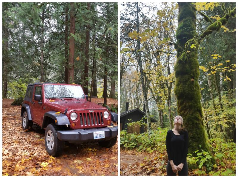 Camping Cascades National Park