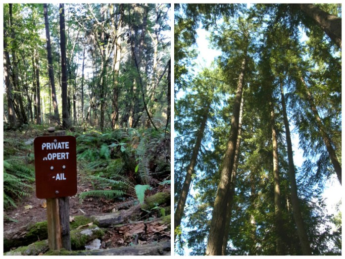 Cranberry Lake trails