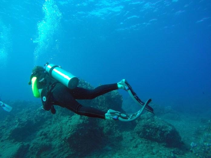 Scuba Dive Maui - LiveRecklessly.com