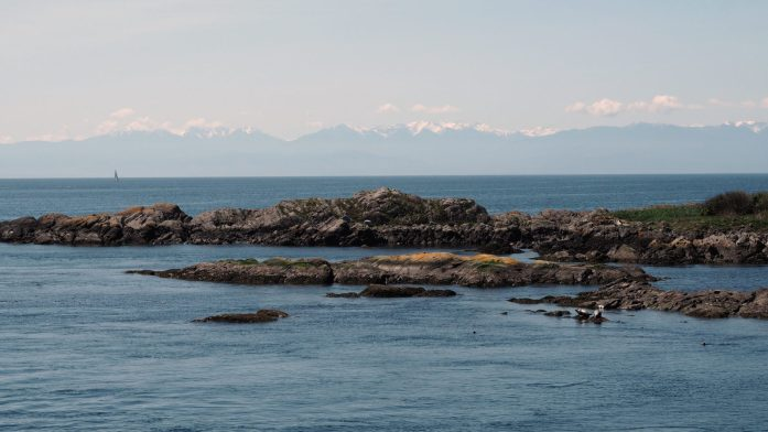 Expat Escapades April 2016: Lopez Island camping - LiveRecklessly.com