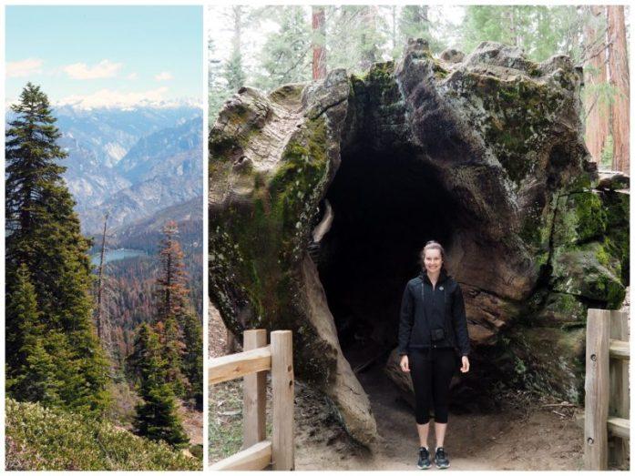 My journey through America's national parks - LiveRecklessly.com