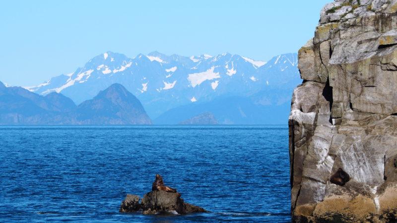 My journey through America's national parks Kenai Fjords National Park Alaska - LiveRecklessly.com
