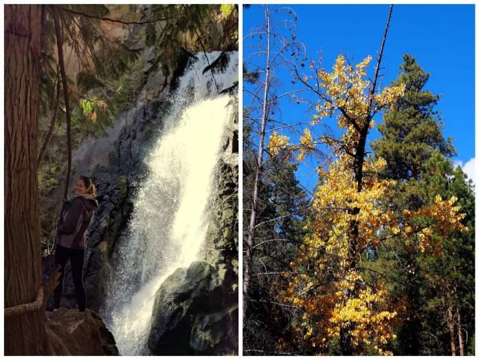 edited-collage-falls-creek-falls-winthrop-area