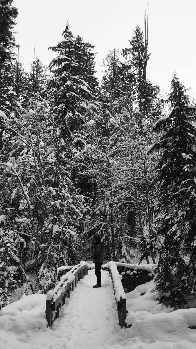 Deception Falls Washington - Av winter escape to Leavenworth, Washington - Live Recklessly