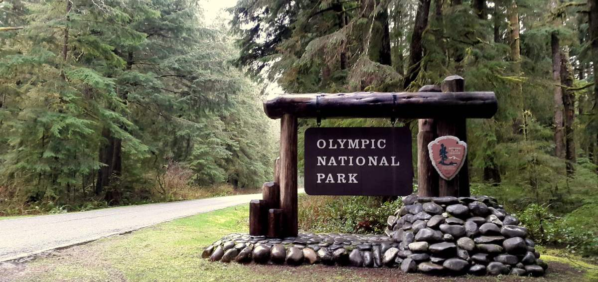 An Olympic National Park Road trip - Live Recklessly