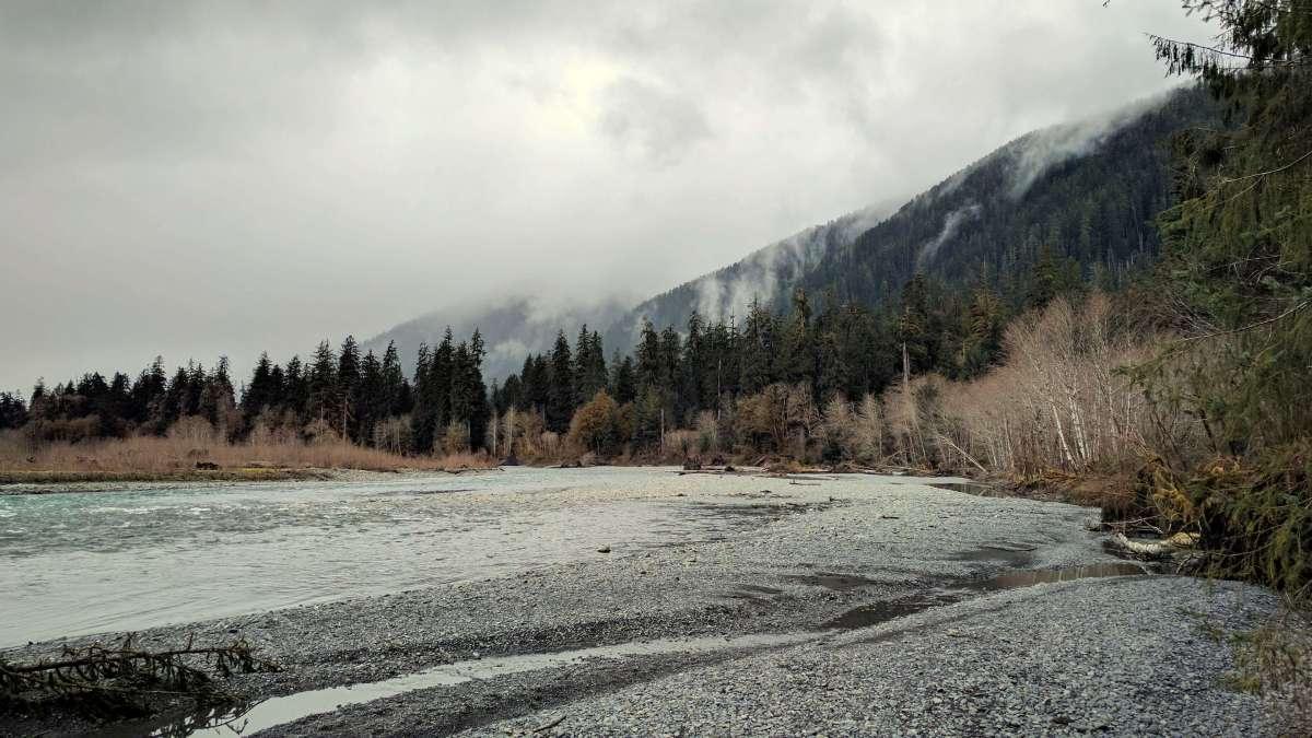Hoh River Trail - Olympic National Park road trip Washington