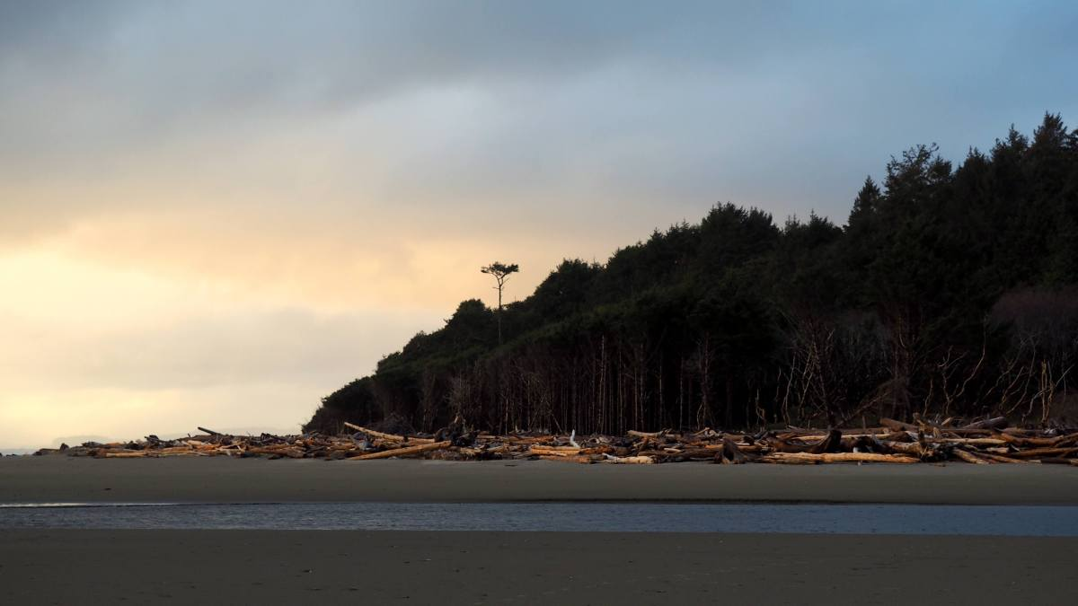 Kalaloch Beach views - An Olympic National Park road trip - Live Recklessly