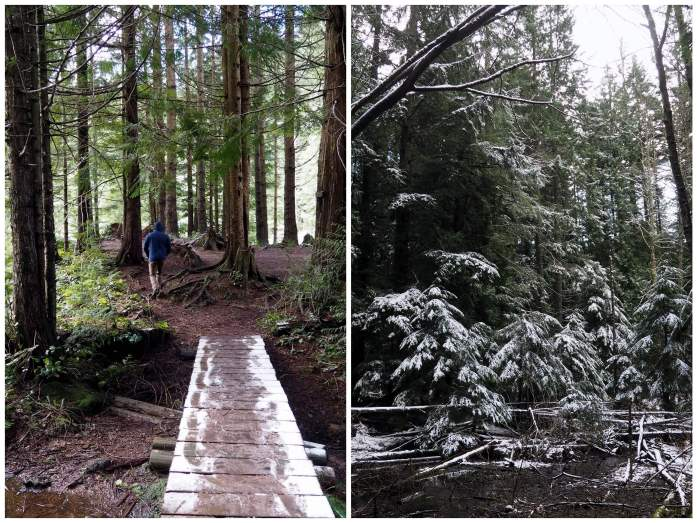 Save Blanchard Mountain Washington - Live Recklessly - Lily Lake