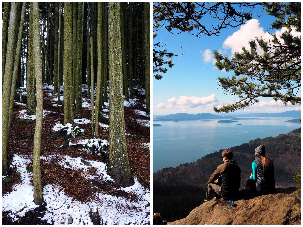 Save Blanchard Mountain Washington - Live Recklessly - Oyster Dome hike summit