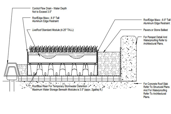 Raised Planter Box Irrigation