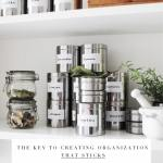The Key To Creating Organization That Sticks