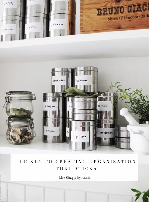 the reason why most efforts to get organized fail...and what to do about it. A need to read.