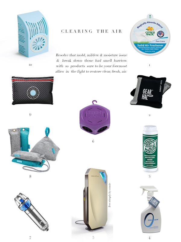 10 best products to purify the air.