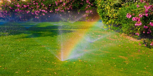 beautiful lawn getting watered with a rainbow