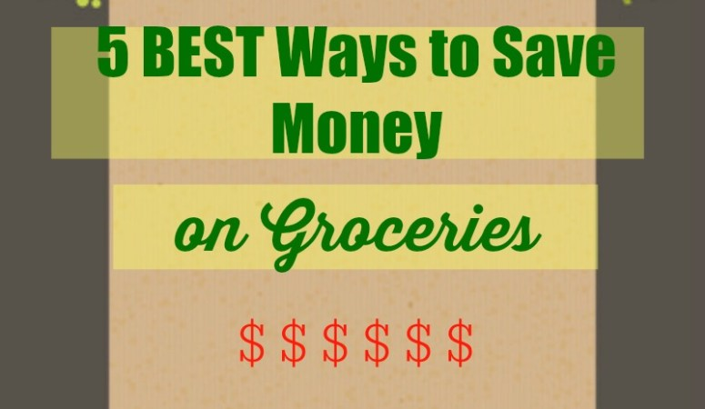 5 BEST Ways to Save Money on Groceries