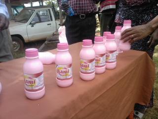 Goat milk yoghurt