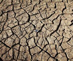 «Θερίζοντας τις θύελλες» της κλιματικής αλλαγής