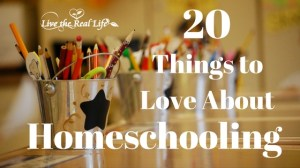 20 Things To Love About Homeschooling