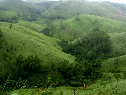 best tourist attractions in kerala- vagamon