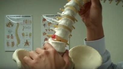 spine-disk