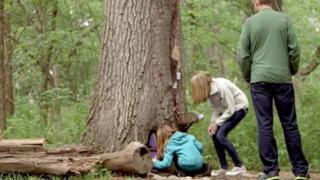 Βρήκαν μια παράξενη πόρτα σε ένα δέντρο. Αυτό που είδαν μέσα. Θα σας Συγκινήσει!(Βίντεο)