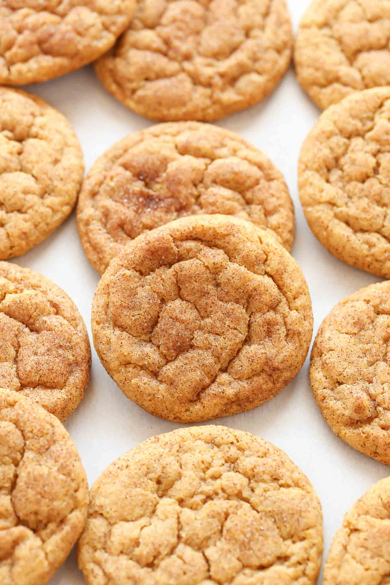 These Pumpkin Snickerdoodles are super soft and chewy (not cakey!), made with real pumpkin, and coated in cinnamon and sugar. A perfect cookie recipe for fall!