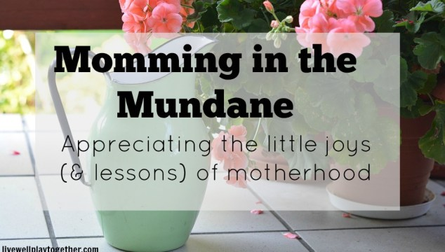 Momming in the Mundane: having the nice things