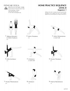 light on ashtanga yoga iyengar pdf
