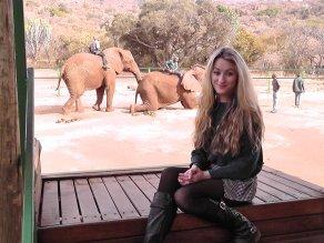 Elephant Sanctuary in hartbeespoort