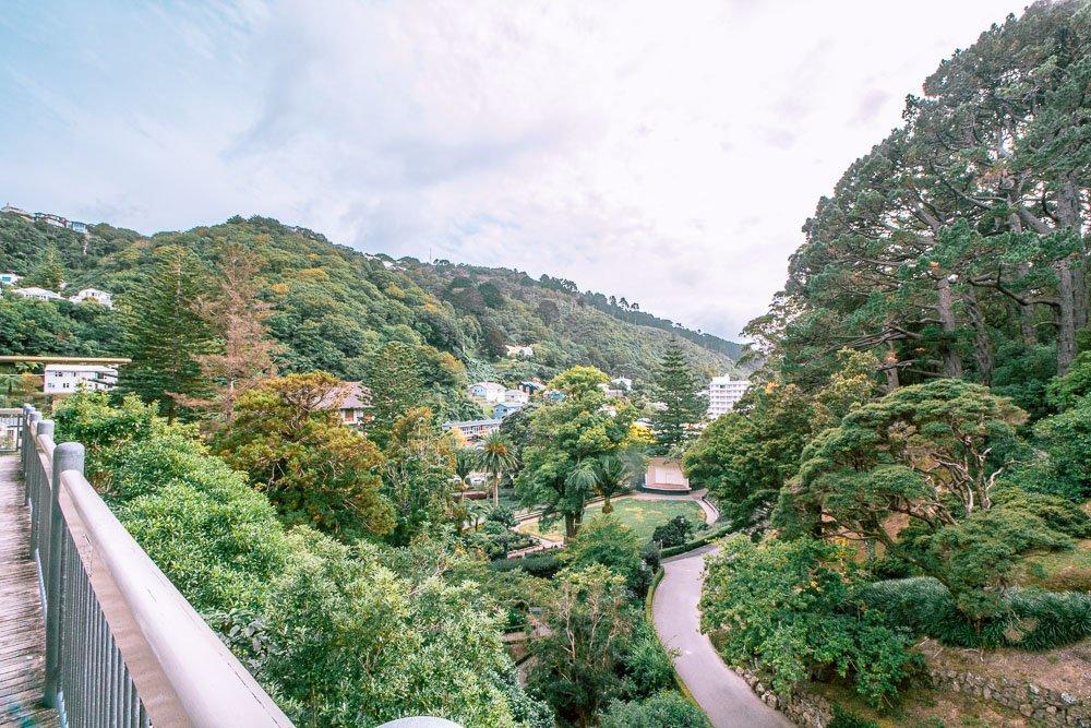 wellington-botanic-gardens-tree-house-2