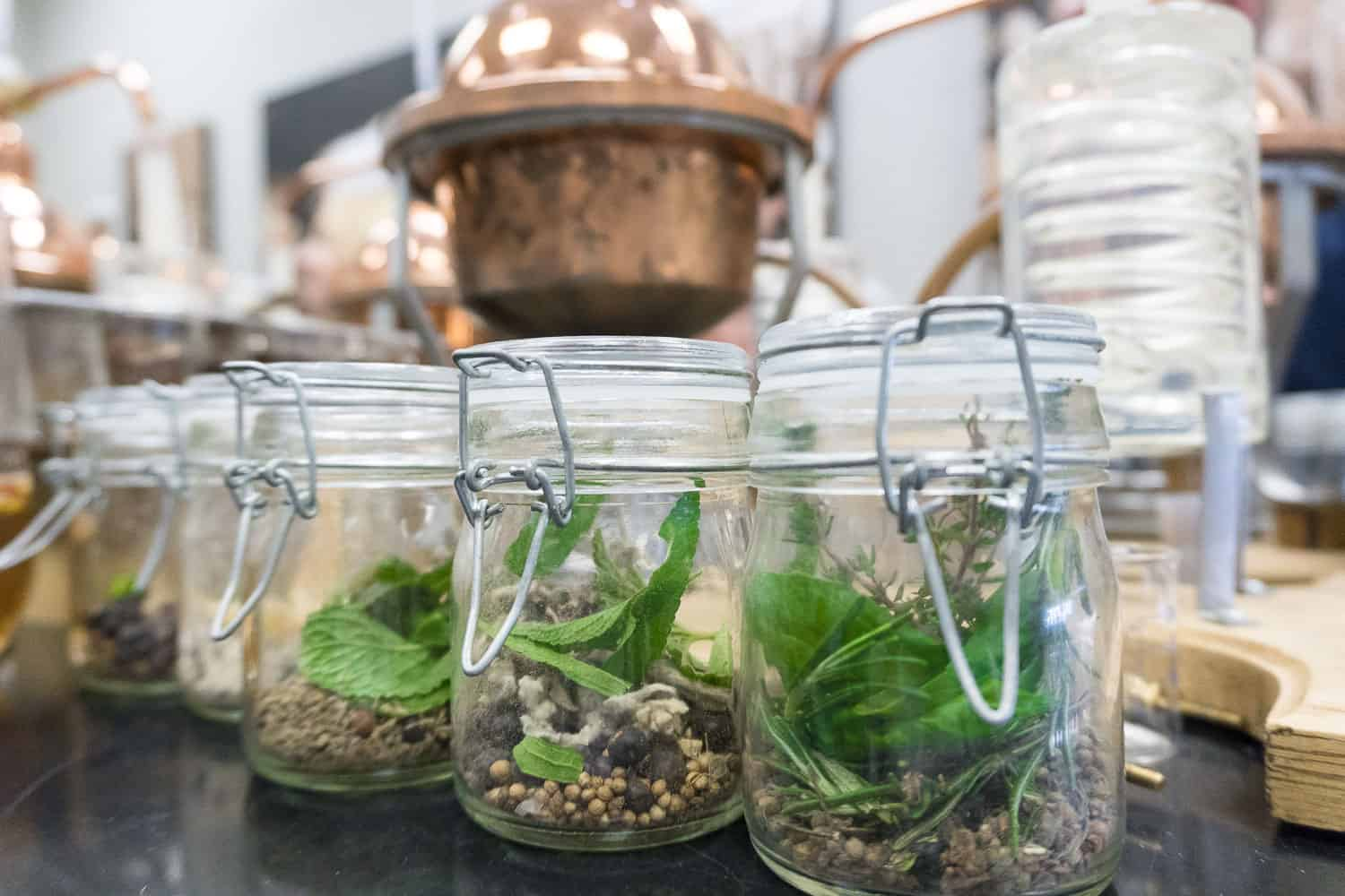 Jars filled with different ingredients. This is used to create the base for your gin.