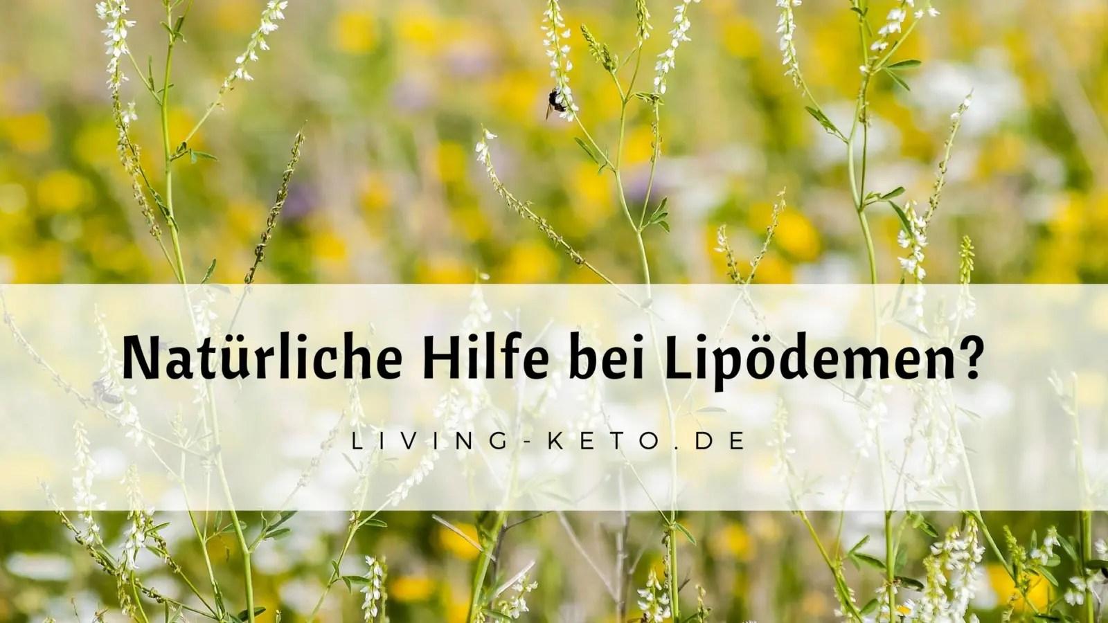 You are currently viewing Natürliche Hilfe bei Lipödemen – mit Steinklee