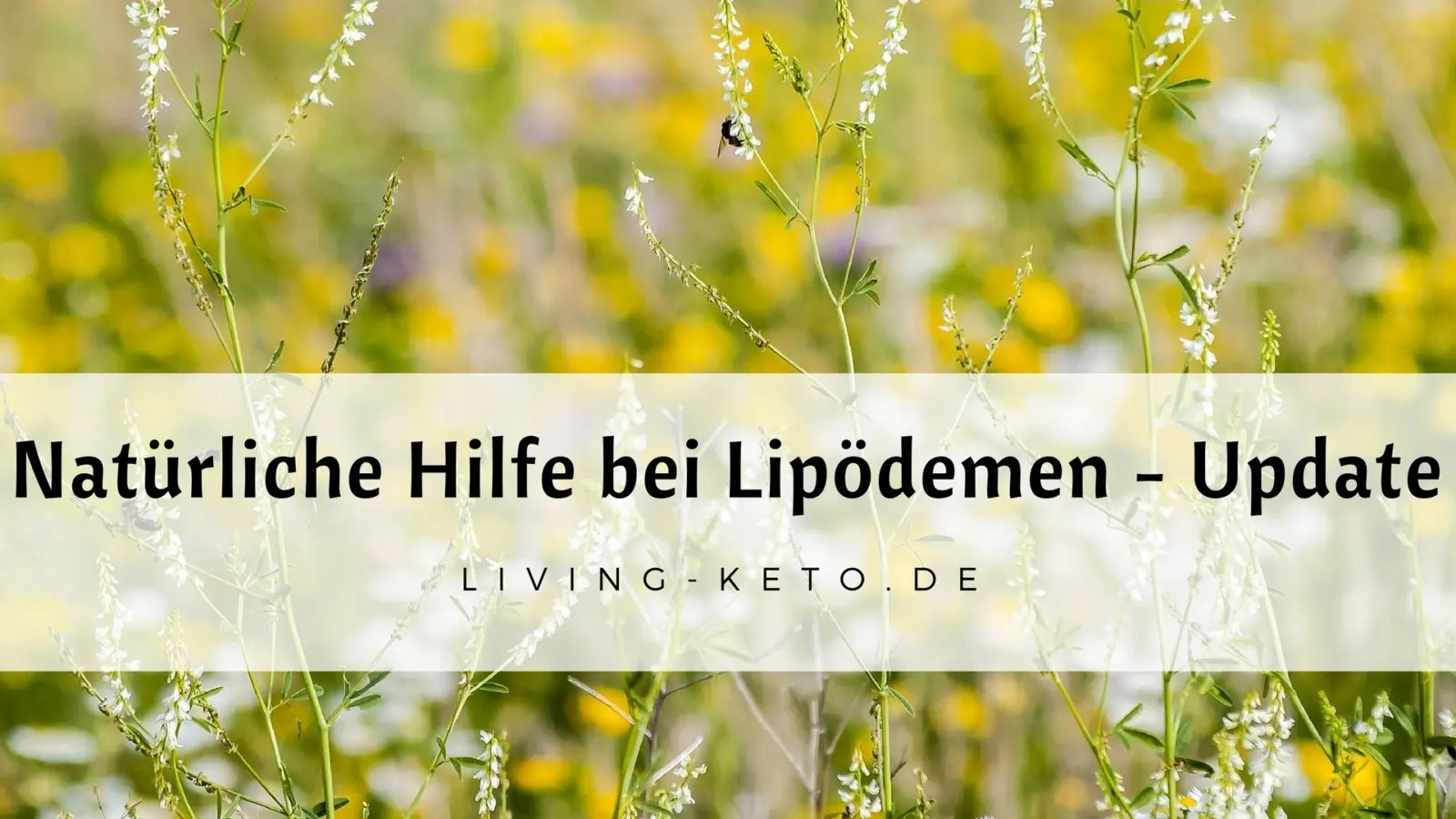 You are currently viewing Natürliche Hilfe bei Lipödemen – ein Update