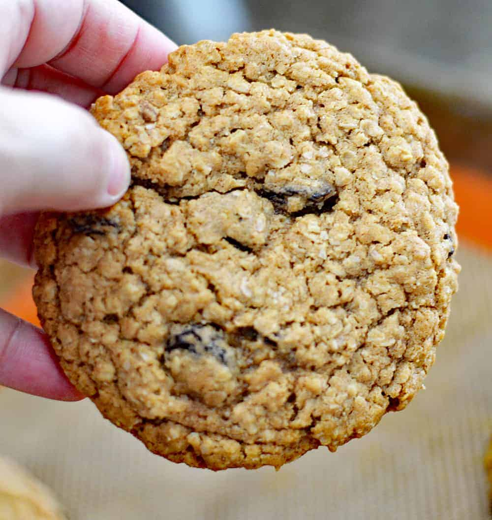 Hand holding a Big & Chewy Vegan Oatmeal Raisin Cookie