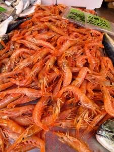 Red Mediterranean prawn (Gambero rosso mediteraneo / Gamberoni) (Aristeus antennatus)
