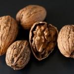 Walnuts by Pauline Mak