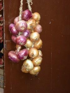 Baby onion / Pearl onion / Cipolline (Cipolline / Cipollette)