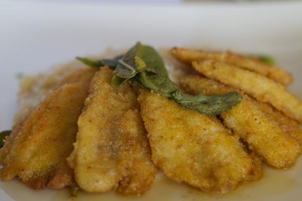 risotto con i filetti di pesce persico (risotto with breaded perch fillets with sage butter sauce)