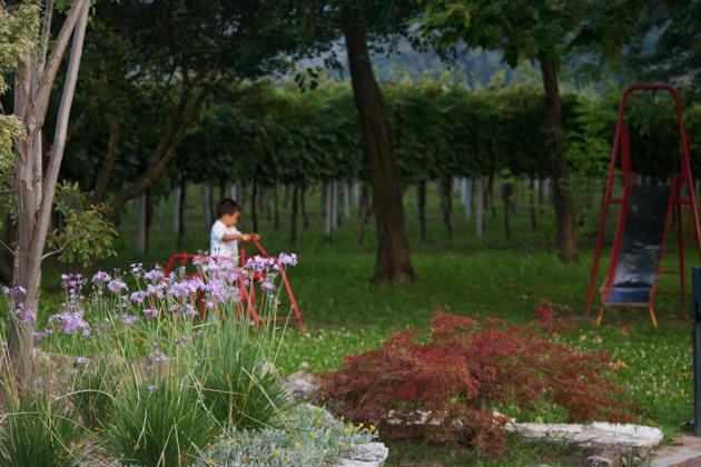 Playing the lawn at La Tavolozza