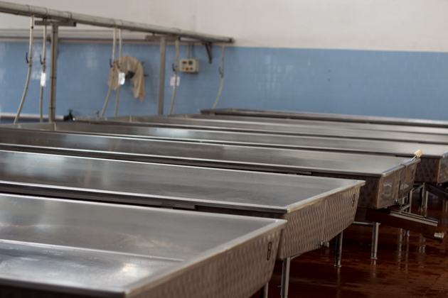 The tables the milk sits in during the night to separate the cream