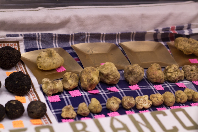 Truffles for all budgets