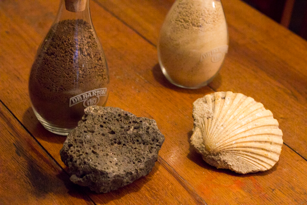 The composition of the soil: volcanic rock and shells