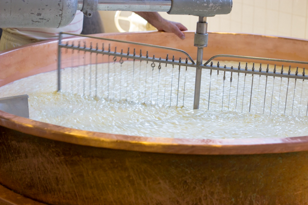 The curds are being broken up by the wired paddle