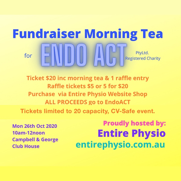 Fundraiser for endometriosis research