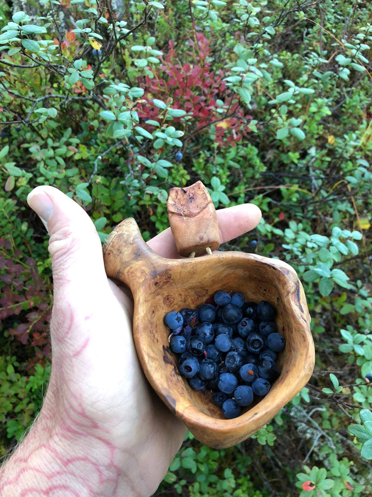LBN 10 days living on the frontier noggin with blueberries