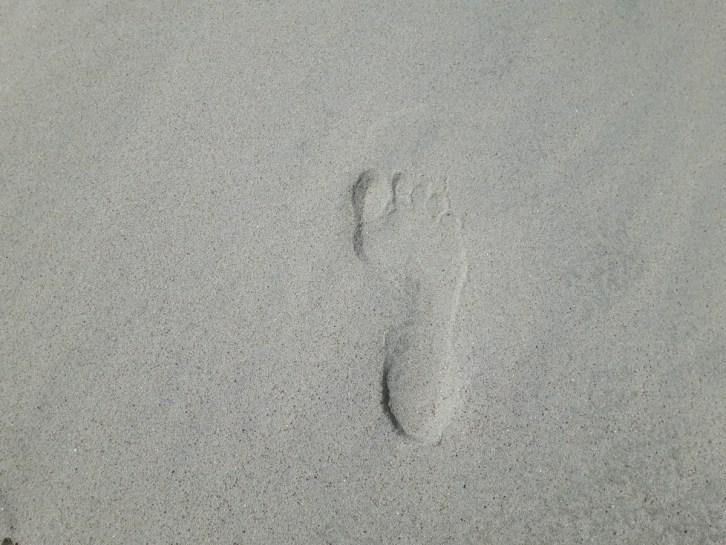 Ecologische voetafdruk van een reiziger