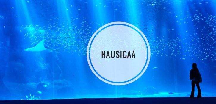 Nausicaa, het grootste aquarium van Europa