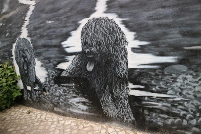 Portugese waterhond - street art Olhão