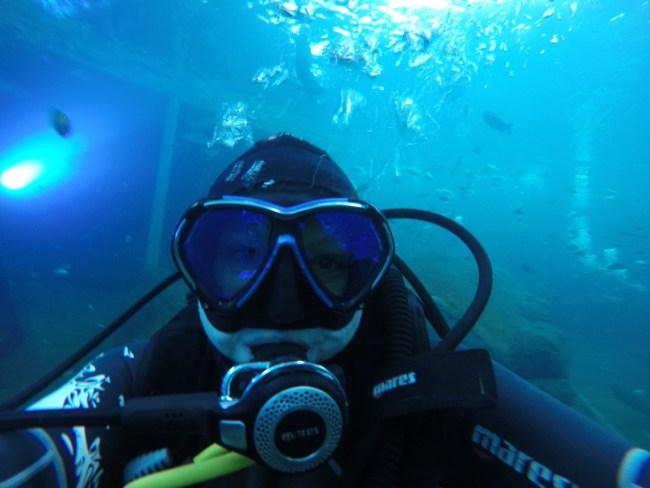 underwater selfie TODI